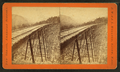 Frankenstein Trestle work. (D) P. & O.R.R, by J.W. & J.S. Moulton.png