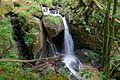 Görwihl Großer Höllbachwasserfall Bild 2.jpg