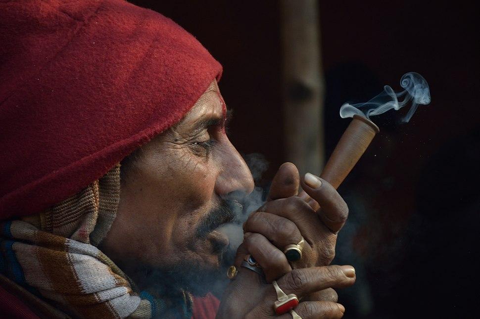 Ganja Smoking - Gangasagar Fair Transit Camp - Kolkata 2013-01-12 2646