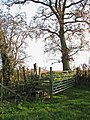Gate and stile into pasture - geograph.org.uk - 1061478.jpg