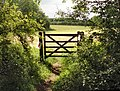 Gate out of Briary Wood - geograph.org.uk - 443691.jpg