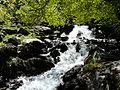 Gave de Gaube cascade (2).JPG