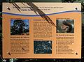 Gedenktafel Leonhard-Frank-Str 10 (Nieds) Schönholzer Heide.jpg