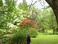 Giardino di Ninfa 143.jpg