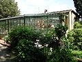 Giardino giuliani, metà superiore 06 serra.JPG