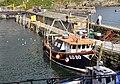 Girl Jane in Polperro harbour.jpg