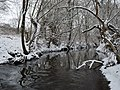 Glems im Winter (3).jpg