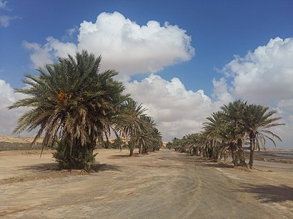 Comment aller à Boughrara en transport en commun - A propos de cet endroit