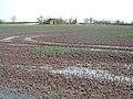 Grange Farm, Stretham, Cambs - geograph.org.uk - 357571.jpg