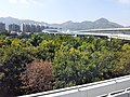 HK Bus B3 view Tuen Mun to SZ Shenzhen Bay Port November 2019 SS2 18.jpg