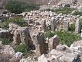Haifa-Tel-Shikmona-919.jpg