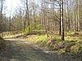 Halemba, Ruda Śląska, Poland - panoramio (21).jpg