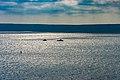 Harbour North Sydney Nova Scotia (39555195690).jpg