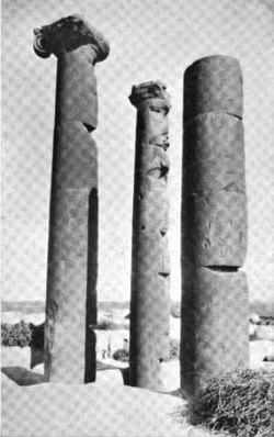 The basaltic Roman-era columns from which Harran al-Awamid receives its name, 1903