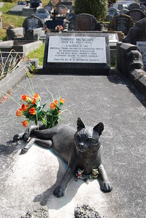 "Harry McNish - McNish's grave in Karori Cemetery with the statue of Mrs Chippy which was added by the New Zealand Antarctic Society. His last name is here spelled ""McNeish""."