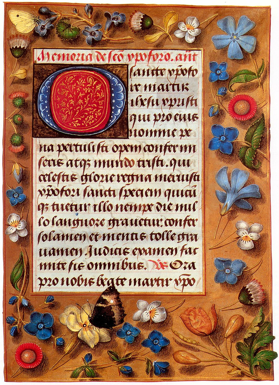 Hastings book of the hours