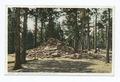 Helen Hunt's Grave, Colorado Springs, Colorado (NYPL b12647398-69840).tiff