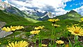 Hiking Alps near Lech 2017 16 (39492369925).jpg