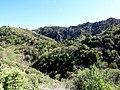 Hiking Towsley Canyon (2323880329).jpg