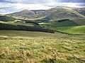 Hillside and woodland plantations west of Hethpool - geograph.org.uk - 570797.jpg