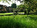 Hinton Ampner, view from churchyard - geograph.org.uk - 797101.jpg
