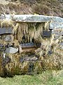 Horse Trough, Road to the Mull of Kintyre Lighthouse - geograph.org.uk - 83675.jpg