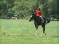 Horse riding at ssc.png