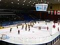 Hungary vs. Ukraine at 2018 IIHF World U18 Championship Division I (16).jpg