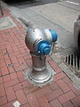 Hydrant in Hong-Kong 2.JPG