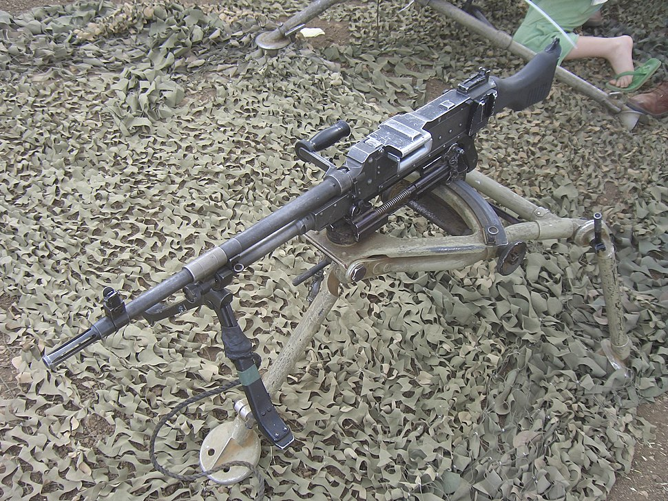 IDF-FN-MAG-2010