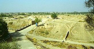 Palace of Darius in Susa - Image: Iran Susa Darius Palast 1