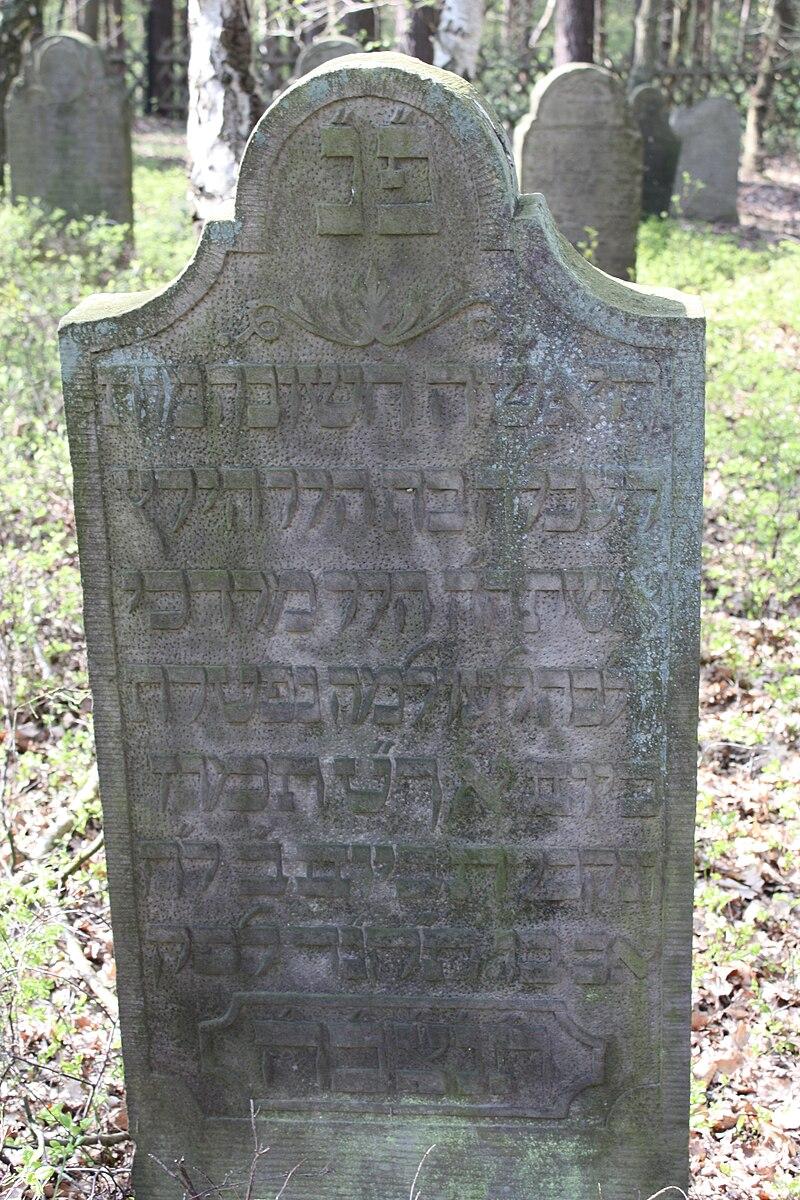 Jüdischer Friedhof Hoyerhagen 20090413 017.JPG