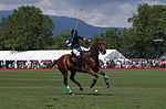 Jaeger-LeCoultre Polo Masters 2013 - 31082013 - Match Legacy vs Jaeger-LeCoultre Veytay for the third place 33.jpg