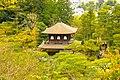 Japan (25672426214).jpg