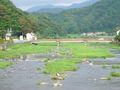Japan Tottori Misasa river DSC01310.jpg