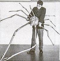 Largest organisms - Wikipedia