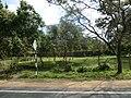 Jayanthipura, Polonnaruwa, Sri Lanka - panoramio (20).jpg