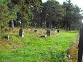 Jewish cemetery in Rakov 1h.jpg