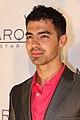 Joe Jonas (6883558490).jpg