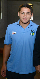 Juan Fuentes Chilean footballer