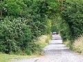 Jubilee Trail, Durweston - geograph.org.uk - 1390033.jpg