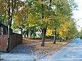 Jugla, Tirzas iela, Riga, Latvia - panoramio (4).jpg
