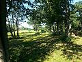Jungfruskär Pargas meadows 3.jpg