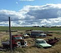Junked cars in the grass (4597027789).jpg