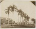 KITLV - 39052 - Muller, Julius Eduard - Paramaribo - Former plantation Alkmaar on the Commewijne River in Surinam - circa 1885.tif