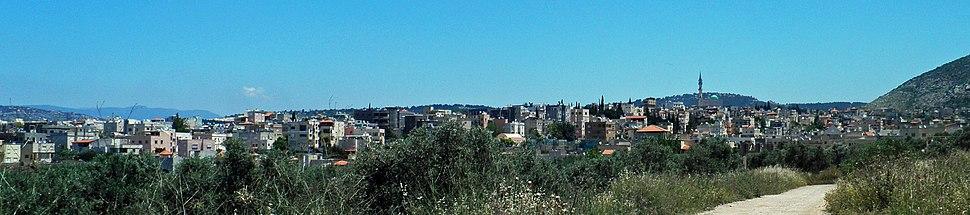 Kabul (Israel) 5 crop