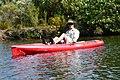 Kayak Paddle (19) (15885248435).jpg