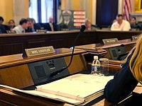 Kelly Loeffler seat at VA markup - 2020.jpg