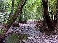 Kemence-patak, Börzsöny, Hungary - panoramio (1).jpg