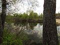 Kilnyshche lake Muromets6.JPG
